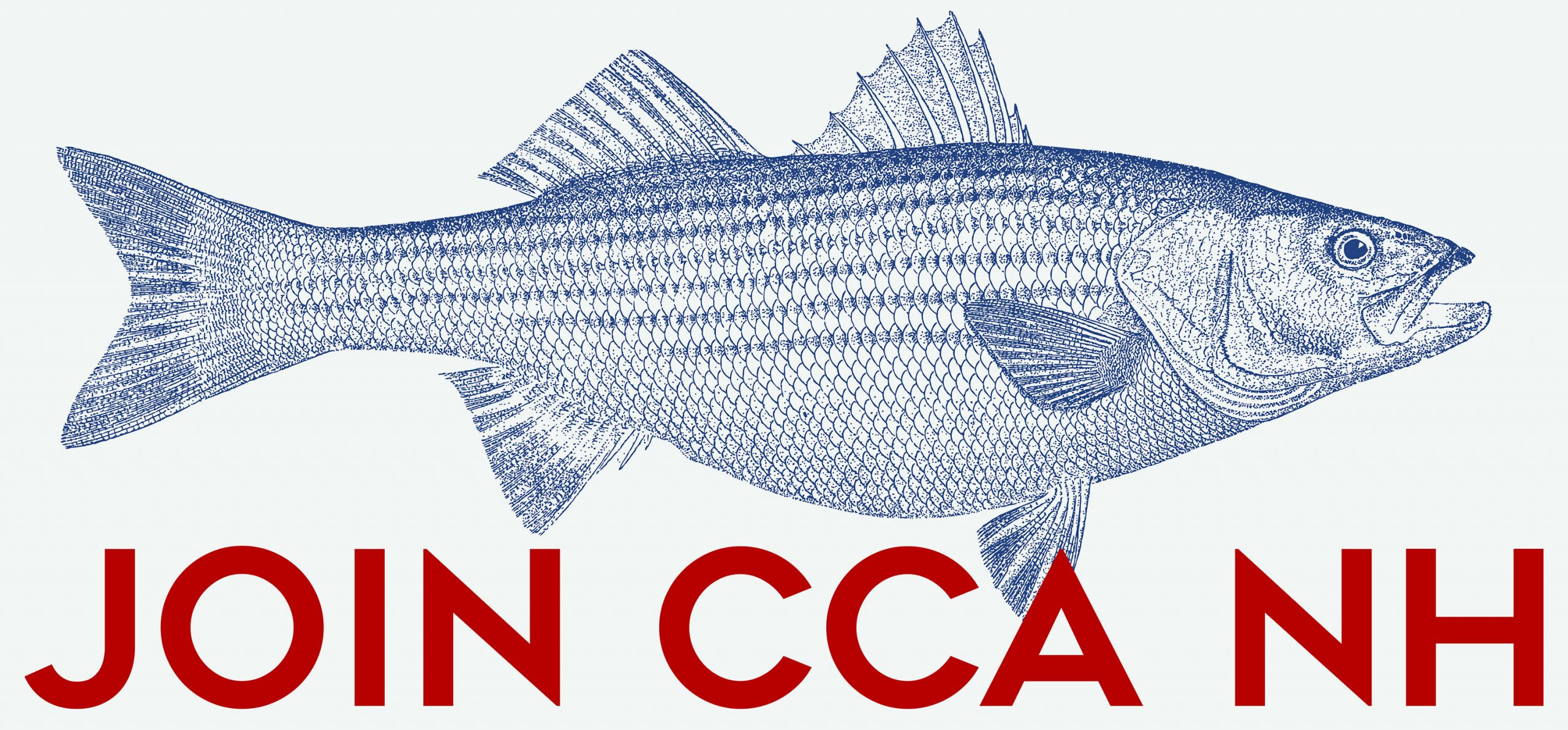 Striped bass Join CCANH