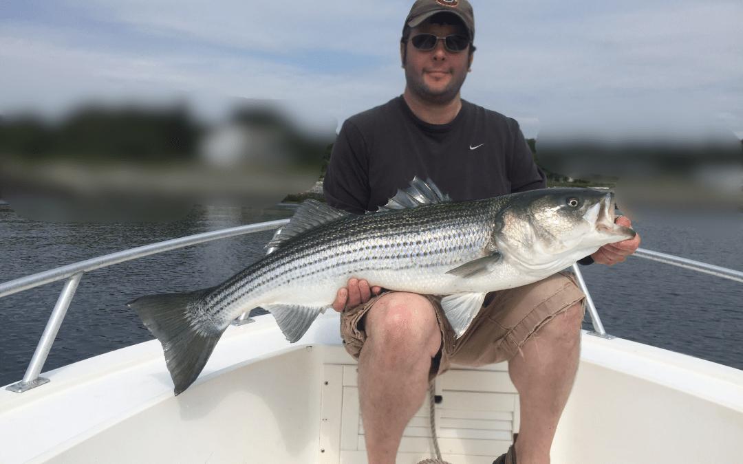 NH Fish and Game's Coastal Striped Bass Angler Survey